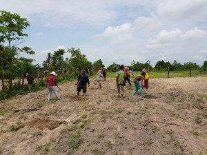 ដើមឡើយ ក្រុមអ្នកផលិតបានរួមគ្នាក្នុងការដាំម្រុំនៅលើសួនបង្ហាញ In the beginning, the producer group planted moringa together on the demonstration plot