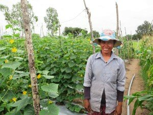 Mrs. Choun Yan, 37, farmer using Trichoderma, Siem Reap Province, Cambodia.