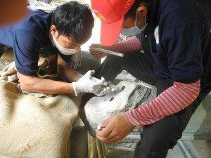 Preparing Naga Balustrade for re-attachment of its head - Prasat Banteay Samre